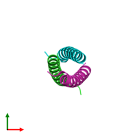 PDB 1rb5 coloured by chain and viewed from the top.