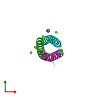 PDB 1rb6 coloured by chain and viewed from the top.