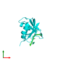 PDB 1rcn coloured by chain and viewed from the top.
