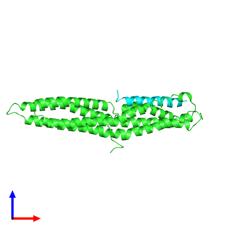 <div class='caption-body'><ul class ='image_legend_ul'>The deposited structure of PDB entry 1rkc coloured by chain and viewed from the side. The entry contains: <li class ='image_legend_li'>1 copy of Vinculin</li><li class ='image_legend_li'>1 copy of Talin-1</li><li class ='image_legend_li'>There are no non-polymeric molecules</li></ul></li></ul></li></div>