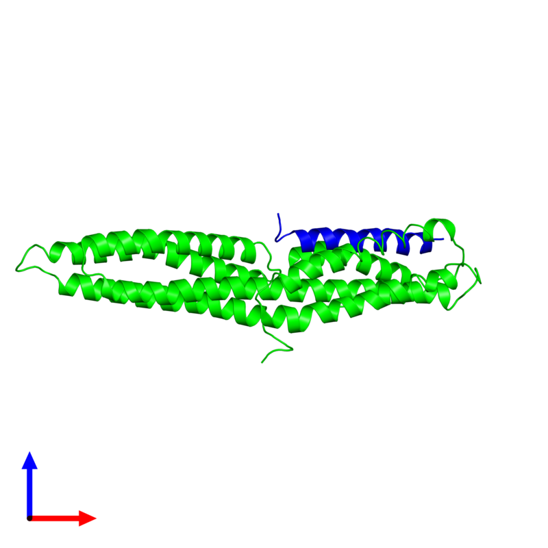 <div class='caption-body'><ul class ='image_legend_ul'>The deposited structure of PDB entry 1rkc coloured by chemically distinct molecules and viewed from the side. The entry contains: <li class ='image_legend_li'>1 copy of Vinculin</li><li class ='image_legend_li'>1 copy of Talin-1</li><li class ='image_legend_li'>There are no non-polymeric molecules</li></ul></li></ul></li></div>