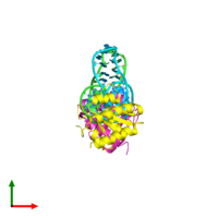 PDB 1rlg coloured by chain and viewed from the top.
