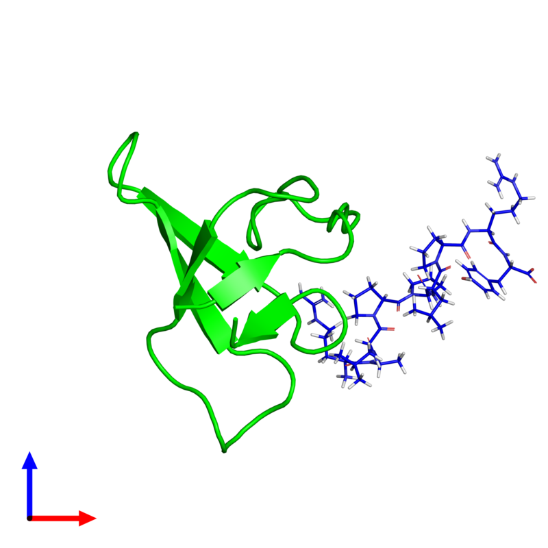 <div class='caption-body'><ul class ='image_legend_ul'> 0-meric assembly 1 of PDB entry 1rlp coloured by chemically distinct molecules and viewed from the side. This assembly contains:</ul></div>
