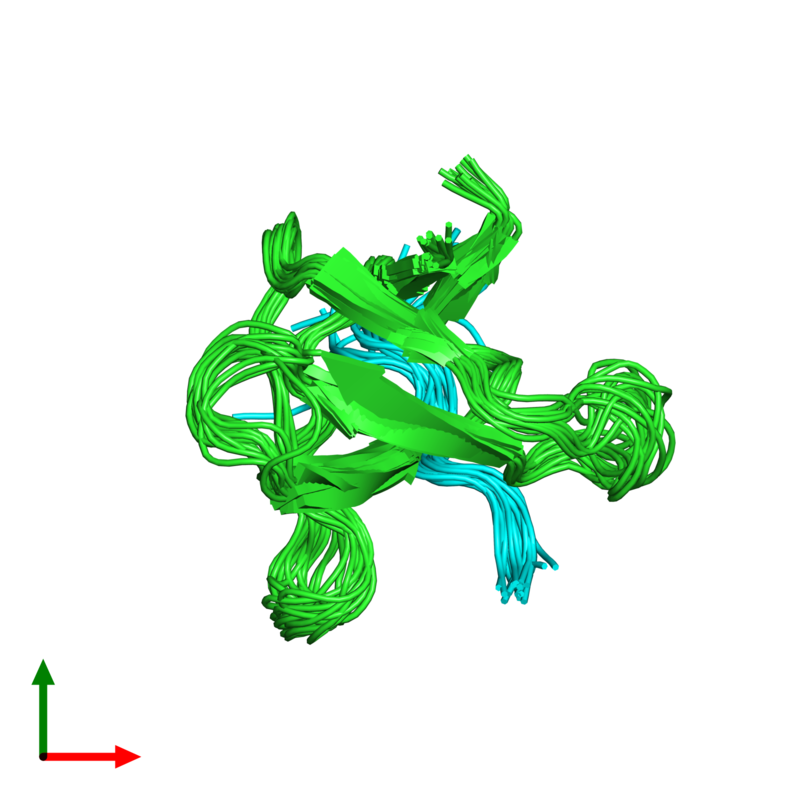 <div class='caption-body'><ul class ='image_legend_ul'>The deposited structure of PDB entry 1rlp coloured by chain and viewed from the top. The entry contains: <li class ='image_legend_li'>1 copy of C-SRC TYROSINE KINASE SH3 DOMAIN</li><li class ='image_legend_li'>1 copy of PROLINE-RICH LIGAND RLP2 (RALPPLPRY)</li><li class ='image_legend_li'>There are no non-polymeric molecules</li></ul></li></ul></li></div>