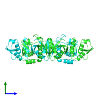 PDB 1rlv coloured by chain and viewed from the side.