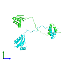 PDB 1rqu coloured by chain and viewed from the front.