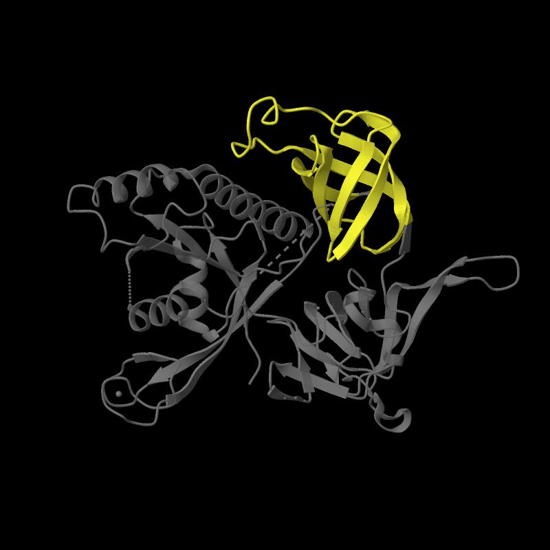 <div class='caption-body'>1 copy of Pfam domain <a target='_blank' href='pfam.xfam.org/family/PF09173'>PF09173</a> (Initiation factor eIF2 gamma, C terminal) in Translation initiation factor 2 subunit gamma in PDB entry 1s0u.</div>