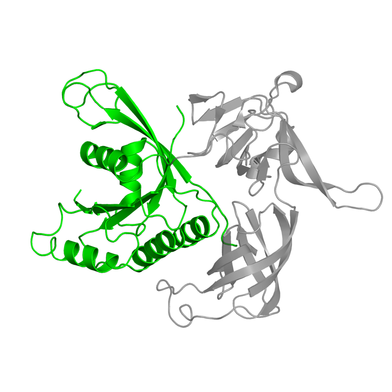 <div class='caption-body'>1 copy of SCOP domain <a target='_blank' href='http://scop.mrc-lmb.cam.ac.uk/scop/search.cgi?sccs=52592'>52592</a> (G proteins) in Translation initiation factor 2 subunit gamma in PDB entry 1s0u.</div>