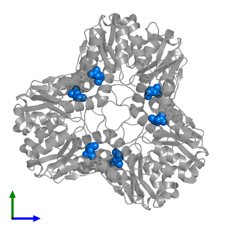 <div class='caption-body'>PDB entry 1s8a contains 6 copies of 2-PHOSPHOGLYCOLIC ACID in assembly 1. This small molecule is highlighted and viewed from the front.</div>