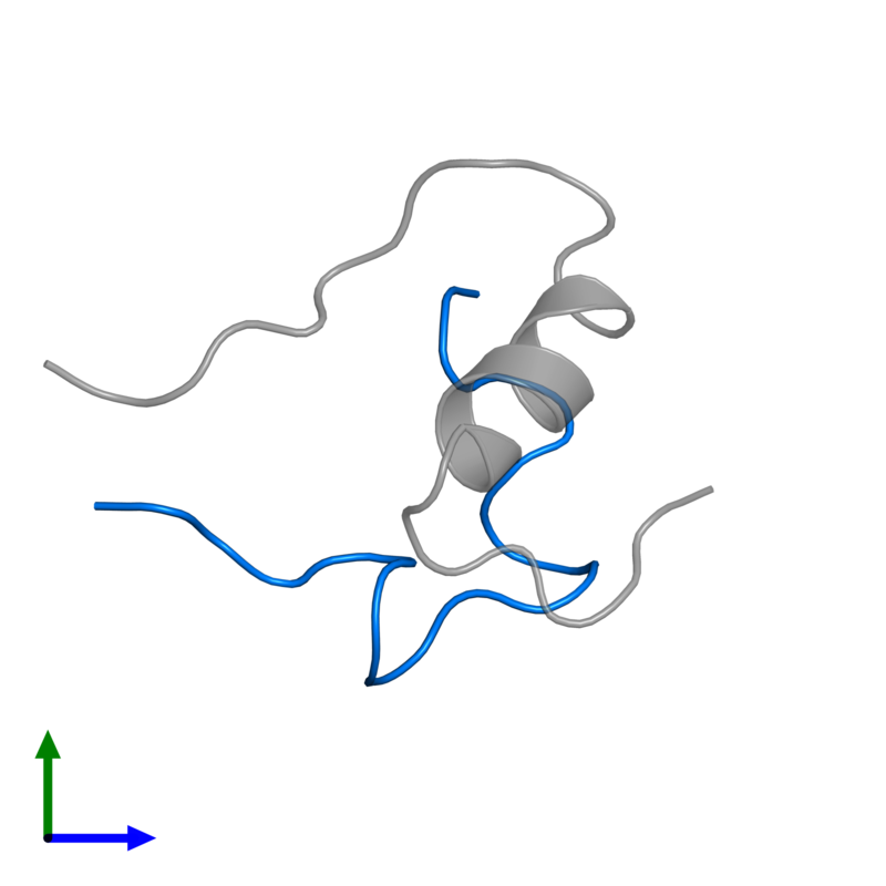 <div class='caption-body'>PDB entry 1sf1 contains 1 copy of Insulin A chain in assembly 1. This protein is highlighted and viewed from the front.</div>