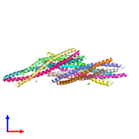 PDB 1sfc coloured by chain and viewed from the side.