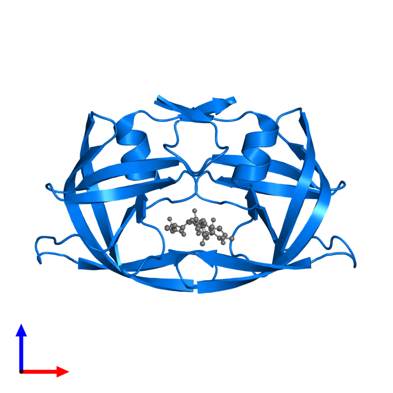 <div class='caption-body'>PDB entry 1siv contains 2 copies of Protease in assembly 1. This protein is highlighted and viewed from the front.</div>