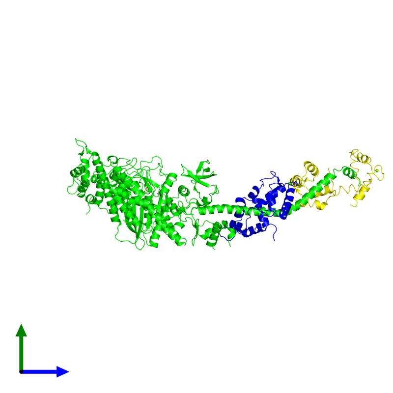 <div class='caption-body'><ul class ='image_legend_ul'> Trimeric assembly 1 of PDB entry 1sr6 coloured by chemically distinct molecules and viewed from the front. This assembly contains:<li class ='image_legend_li'>One copy of Myosin heavy chain, striated muscle</li><li class ='image_legend_li'>One copy of Myosin regulatory light chain, striated adductor muscle</li><li class ='image_legend_li'>One copy of Myosin essential light chain, striated adductor muscle</li><li class ='image_legend_li'>One copy of SULFATE ION</li><li class ='image_legend_li'>One copy of MAGNESIUM ION</li><li class ='image_legend_li'>One copy of CALCIUM ION</li></ul></div>