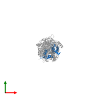 PDB 1sr6 contains 1 copy of Myosin essential light chain, striated adductor muscle in assembly 1. This protein is highlighted and viewed from the top.