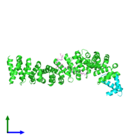PDB 1t08 coloured by chain and viewed from the front.