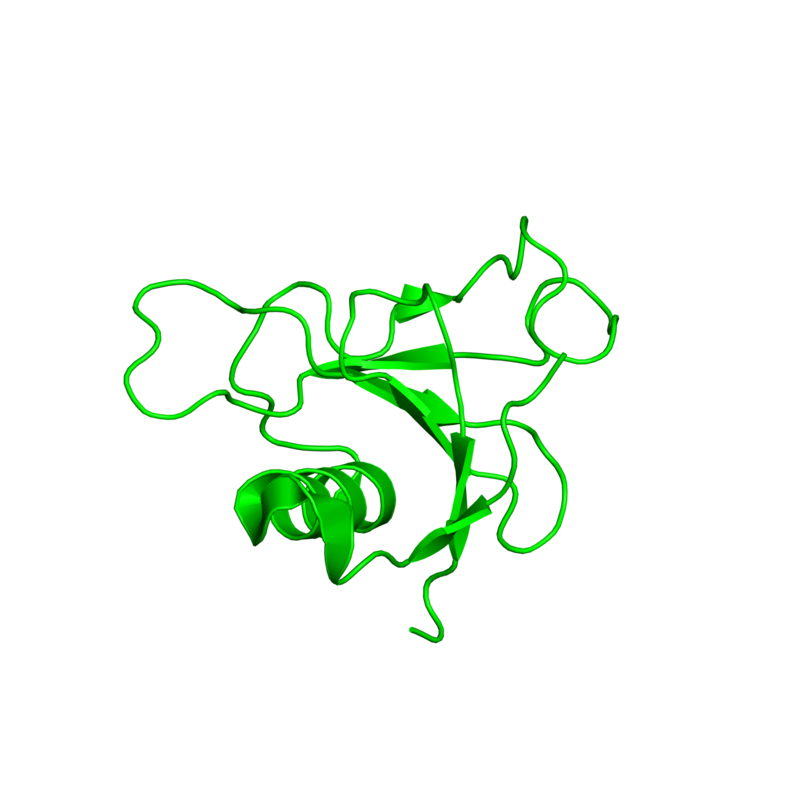 <div class='caption-body'>1 copy of SCOP domain <a target='_blank' href='http://scop.mrc-lmb.cam.ac.uk/scop/search.cgi?sccs=81307'>81307</a> (Bacterial ribonucleases) in Guanyl-specific ribonuclease Sa in PDB entry 1t2i.</div>