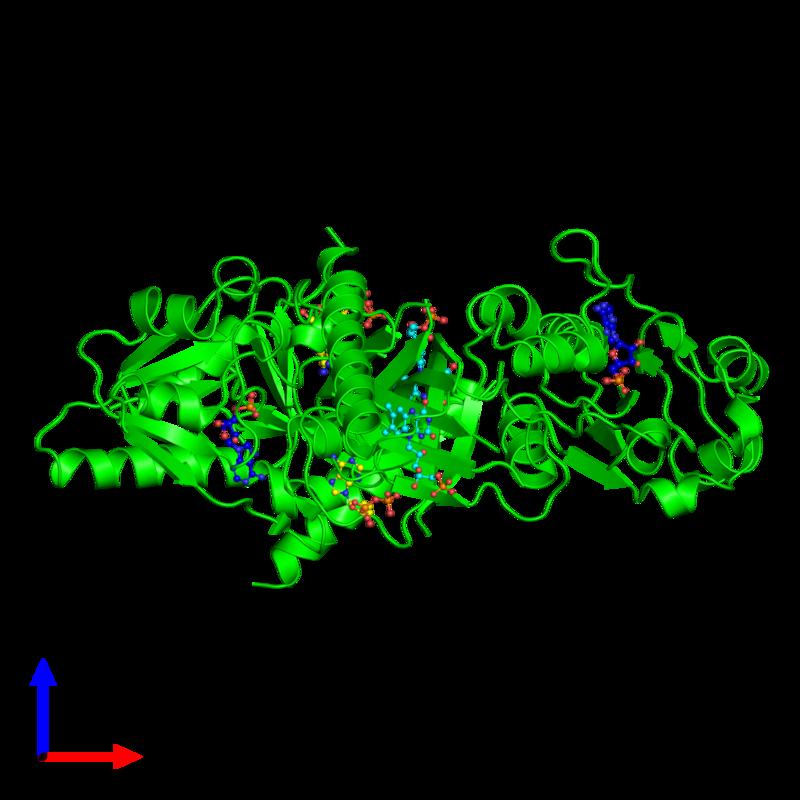 <div class='caption-body'><ul class ='image_legend_ul'>The deposited structure of PDB entry 1t6y coloured by chemically distinct molecules and viewed from the side. The entry contains: <li class ='image_legend_li'>2 copies of Riboflavin biosynthesis protein</li><li class ='image_legend_li'>3 non-polymeric entities<ul class ='image_legend_ul'><li class ='image_legend_li'>2 copies of ADENOSINE-5'-DIPHOSPHATE</li><li class ='image_legend_li'>2 copies of ADENOSINE MONOPHOSPHATE</li><li class ='image_legend_li'>2 copies of FLAVIN MONONUCLEOTIDE</li></ul></li></div>