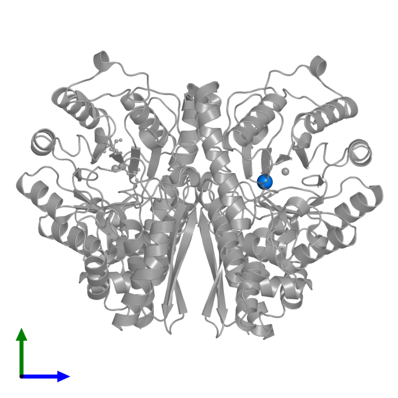 <div class='caption-body'>PDB entry 1te6 contains 1 copy of 2-AMINO-2-HYDROXYMETHYL-PROPANE-1,3-DIOL in assembly 1. This small molecule is highlighted and viewed from the front.</div>