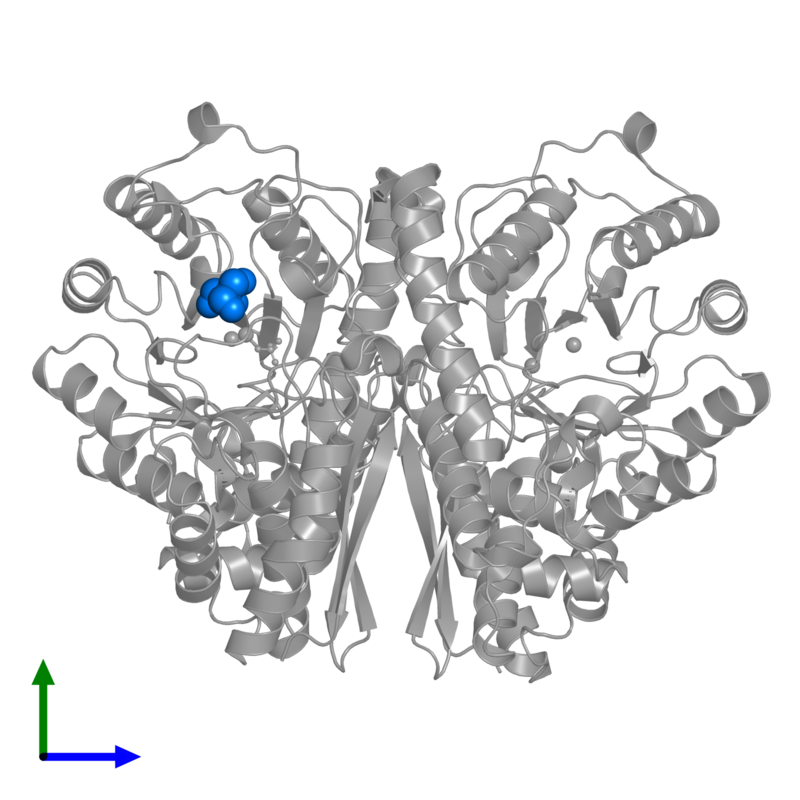 <div class='caption-body'>PDB entry 1te6 contains 1 copy of CHLORIDE ION in assembly 1. This small molecule is highlighted and viewed from the front.</div>