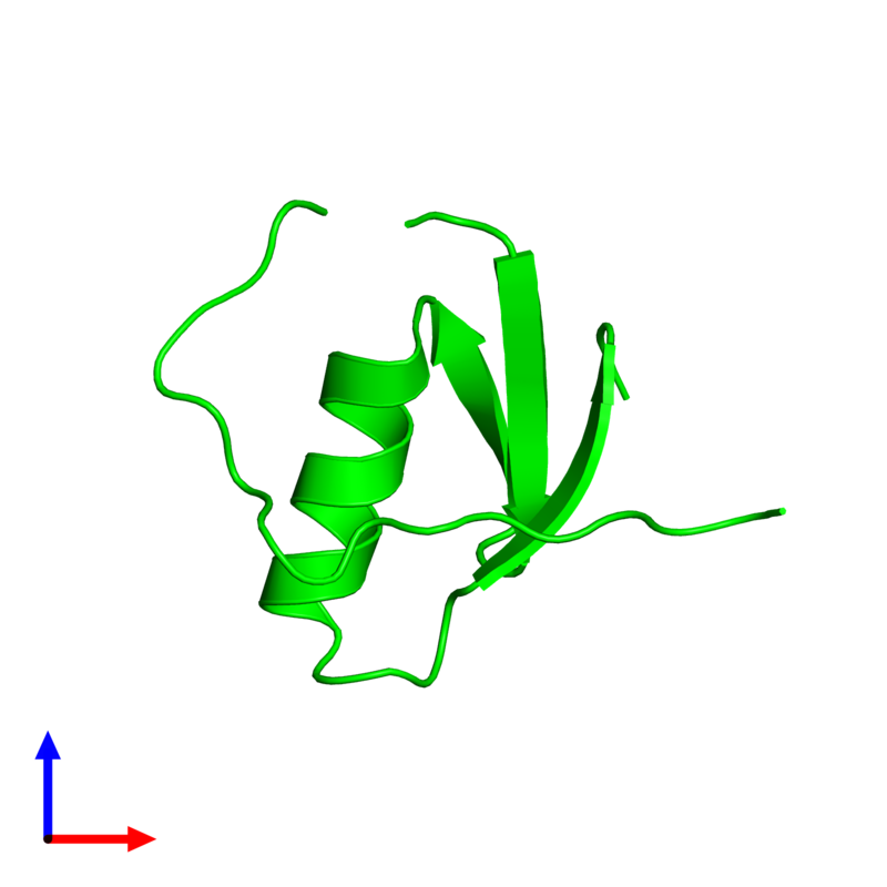 <div class='caption-body'><ul class ='image_legend_ul'> Monomeric assembly 1 of PDB entry 1tus coloured by chemically distinct molecules and viewed from the front. This assembly contains:<li class ='image_legend_li'>One copy of Ovomucoid</li></ul></div>
