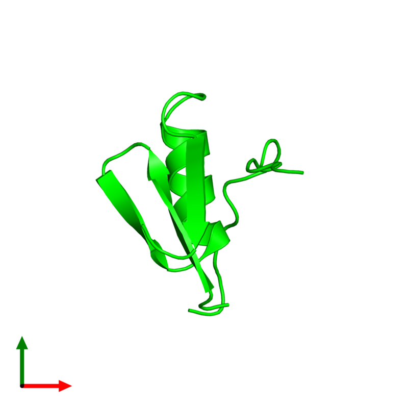 <div class='caption-body'><ul class ='image_legend_ul'> Monomeric assembly 1 of PDB entry 1tus coloured by chemically distinct molecules and viewed from the top. This assembly contains:<li class ='image_legend_li'>One copy of Ovomucoid</li></ul></div>