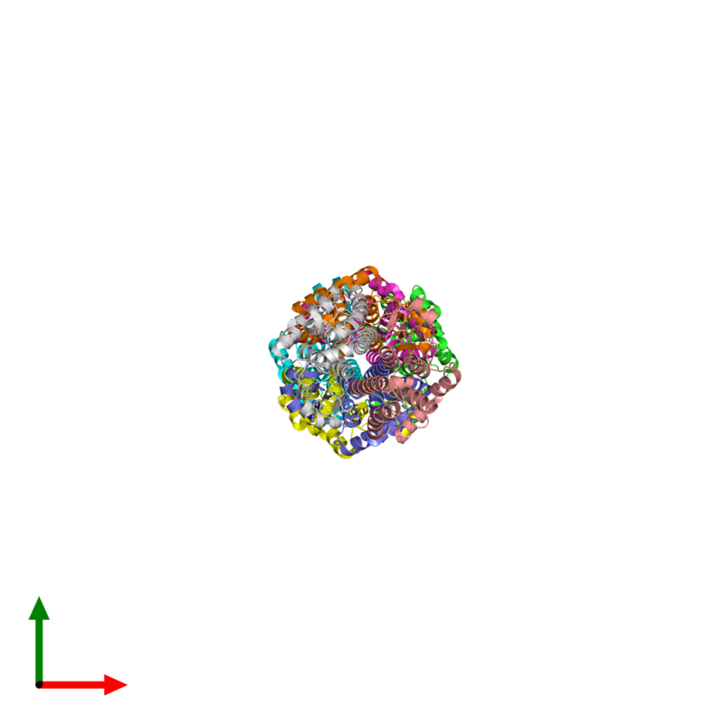 <div class='caption-body'><ul class ='image_legend_ul'>The deposited structure of PDB entry 1tw9 coloured by chain and viewed from the top. The entry contains: <li class ='image_legend_li'>8 copies of Glutathione S-transferase 2</li><li class ='image_legend_li'>There are no non-polymeric molecules</li></ul></li></ul></li></div>
