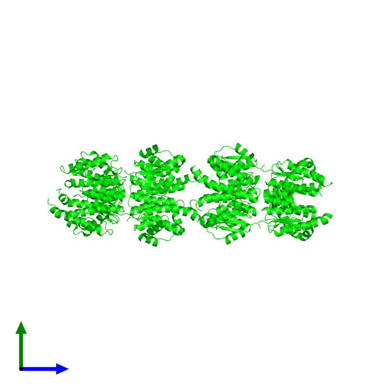 <div class='caption-body'><ul class ='image_legend_ul'>The deposited structure of PDB entry 1tw9 coloured by chemically distinct molecules and viewed from the front. The entry contains: <li class ='image_legend_li'>8 copies of Glutathione S-transferase 2</li><li class ='image_legend_li'>There are no non-polymeric molecules</li></ul></li></ul></li></div>