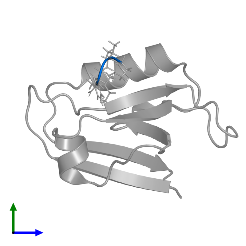 <div class='caption-body'>PDB entry 1u38 contains 1 copy of PVYI in assembly 1. This protein is highlighted and viewed from the front.</div>