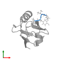 PDB 1u38 contains 1 copy of PVYI in assembly 1. This protein is highlighted and viewed from the top.