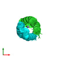 PDB 1u7j coloured by chain and viewed from the top.