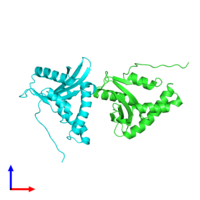 PDB 1ufh coloured by chain and viewed from the front.