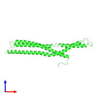 PDB 1uru coloured by chain and viewed from the front.