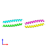 PDB 1w5k coloured by chain and viewed from the front.