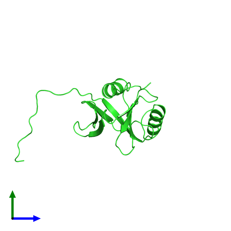 <div class='caption-body'><ul class ='image_legend_ul'>The deposited structure of PDB entry 1wgu coloured by chain and viewed from the side. The entry contains: <li class ='image_legend_li'>1 copy of Amyloid-beta A4 precursor protein-binding family B member 2</li><li class ='image_legend_li'>There are no non-polymeric molecules</li></ul></li></ul></li></div>