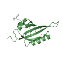 1 copy of Pfam domain PF14598 (PAS domain) in Aryl hydrocarbon receptor nuclear translocator in PDB 1x0o.