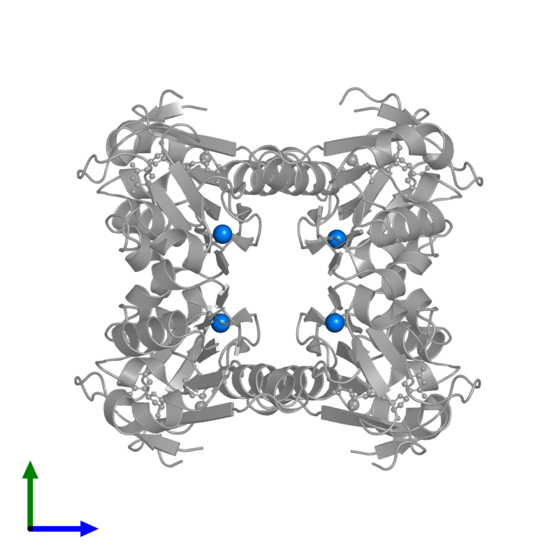 <div class='caption-body'>PDB entry 1xbt contains 4 copies of ZINC ION in assembly 1. This small molecule is highlighted and viewed from the front.</div>