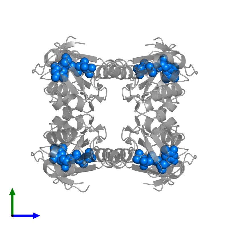 <div class='caption-body'>PDB entry 1xbt contains 4 copies of THYMIDINE-5'-TRIPHOSPHATE in assembly 1. This small molecule is highlighted and viewed from the front.</div>