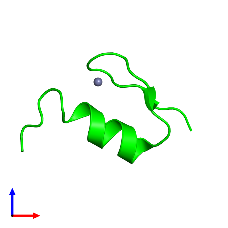 <div class='caption-body'><ul class ='image_legend_ul'> Monomeric assembly 1 of PDB entry 1xf7 coloured by chemically distinct molecules and viewed from the front. This assembly contains:<li class ='image_legend_li'>One copy of Wilms' Tumor Protein</li><li class ='image_legend_li'>One copy of ZINC ION</li></ul></div>