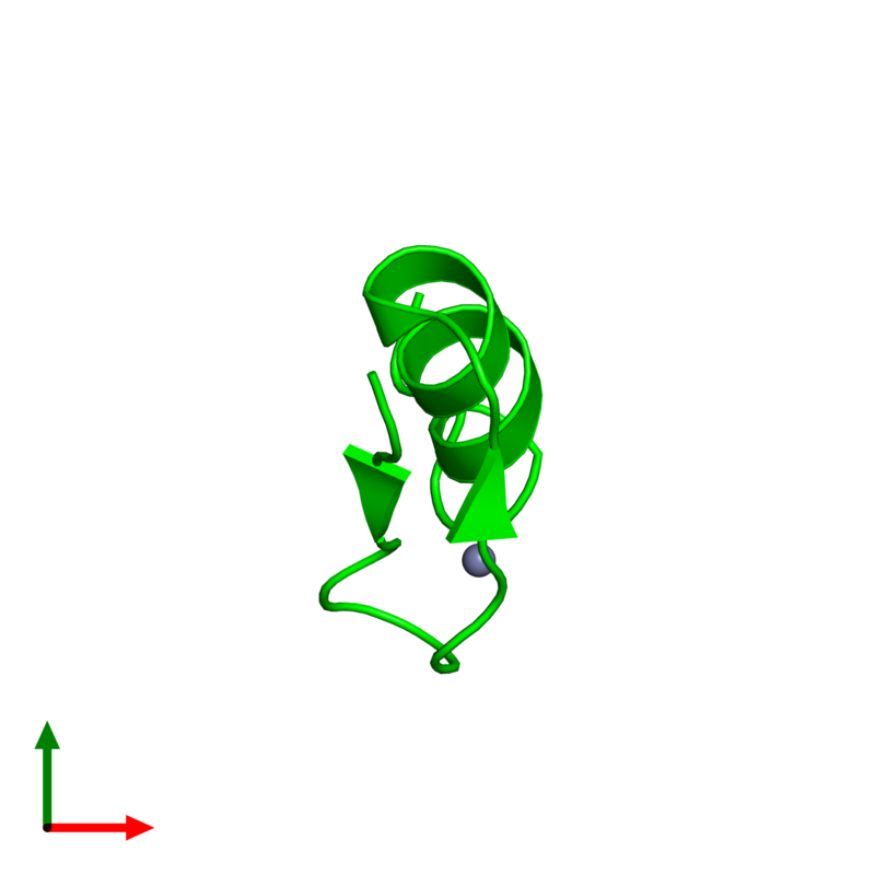 <div class='caption-body'><ul class ='image_legend_ul'> Monomeric assembly 1 of PDB entry 1xf7 coloured by chemically distinct molecules and viewed from the top. This assembly contains:<li class ='image_legend_li'>One copy of Wilms' Tumor Protein</li><li class ='image_legend_li'>One copy of ZINC ION</li></ul></div>