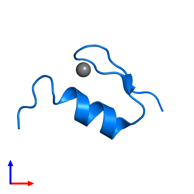 <div class='caption-body'>PDB entry 1xf7 contains 1 copy of Wilms' Tumor Protein in assembly 1. This protein is highlighted and viewed from the front.</div>
