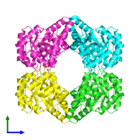 PDB 1xl9 coloured by chain and viewed from the front.