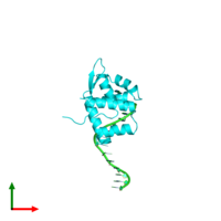 PDB 1xsd coloured by chain and viewed from the top.