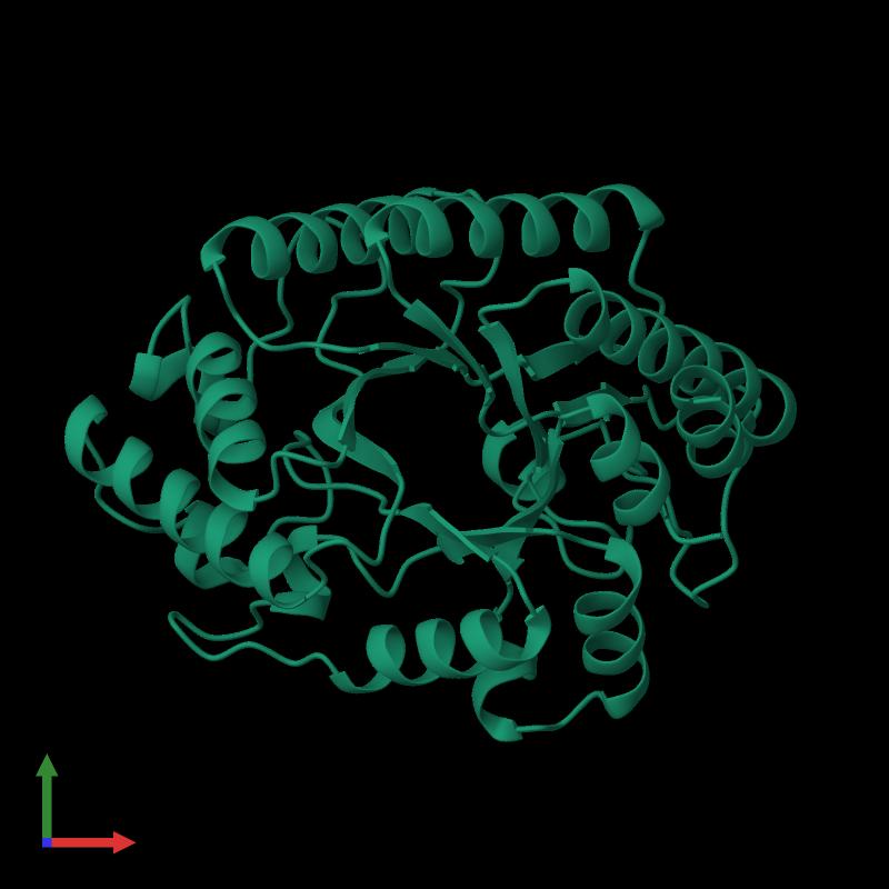 PDB 1xyz gallery � Protein Data Bank in Europe (PDBe) � EMBL-EBI