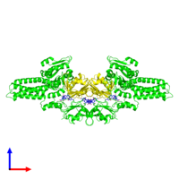 Tetrameric assembly 2 of PDB entry 1xzq coloured by chemically distinct molecules and viewed from the side.
