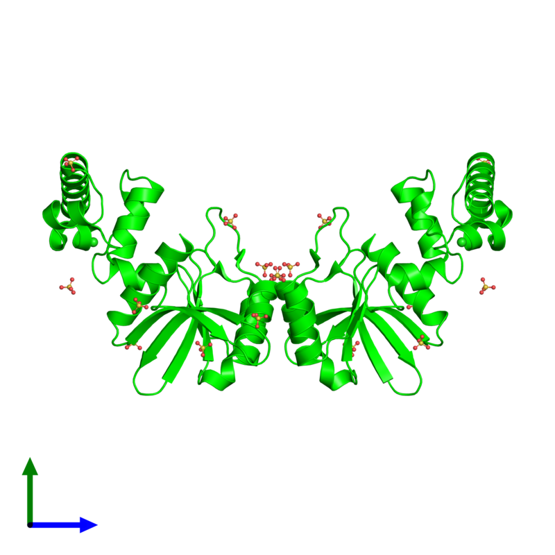 <div class='caption-body'><ul class ='image_legend_ul'> Dimeric assembly 1 of PDB entry 1y88 coloured by chemically distinct molecules and viewed from the front. This assembly contains:<li class ='image_legend_li'>2 copies of Hypothetical protein AF1548</li><li class ='image_legend_li'>2 copies of CHLORIDE ION</li><li class ='image_legend_li'>18 copies of SULFATE ION</li></ul></div>