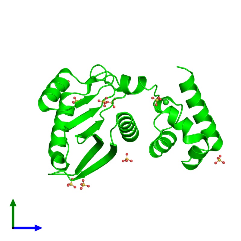 <div class='caption-body'><ul class ='image_legend_ul'>The deposited structure of PDB entry 1y88 coloured by chemically distinct molecules and viewed from the front. The entry contains: <li class ='image_legend_li'>1 copy of Hypothetical protein AF1548</li><li class ='image_legend_li'>2 non-polymeric entities<ul class ='image_legend_ul'><li class ='image_legend_li'>1 copy of CHLORIDE ION</li><li class ='image_legend_li'>9 copies of SULFATE ION</li></ul></li></div>