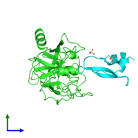 PDB 1yld coloured by chain and viewed from the side.
