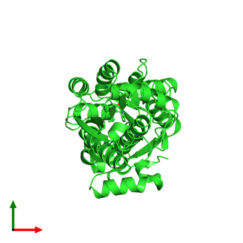 <div class='caption-body'><ul class ='image_legend_ul'>The deposited structure of PDB entry 1z16 coloured by chain and viewed from the top. The entry contains: <li class ='image_legend_li'>1 copy of Leu/Ile/Val-binding protein</li><li class ='image_legend_li'>2 non-polymeric entities<ul class ='image_legend_ul'><li class ='image_legend_li'>1 copy of CADMIUM ION</li><li class ='image_legend_li'>1 copy of LEUCINE</li></ul></li></div>