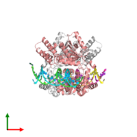 PDB 1z63 coloured by chain and viewed from the top.