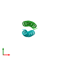 PDB 1zii coloured by chain and viewed from the top.